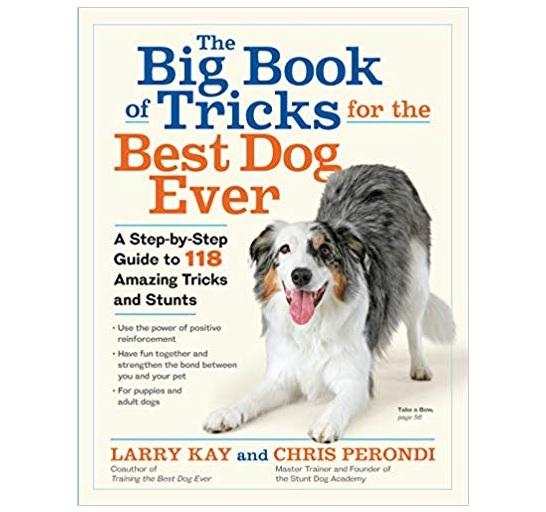Big-Book-Tricks-Best-Dog