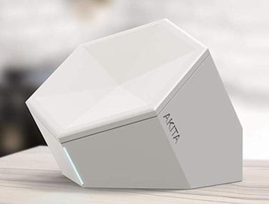 Akita-white
