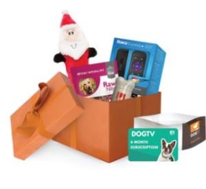 DogTV-box
